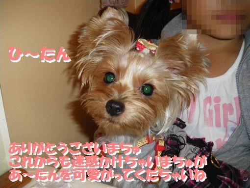1002IMGP1195.jpg