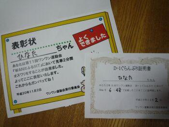 P1000649-a.jpg