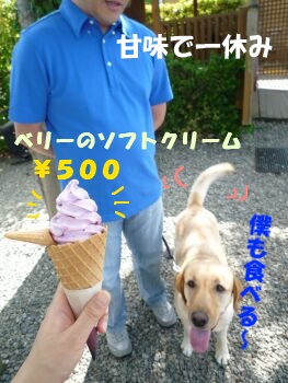 P1080485-a.jpg