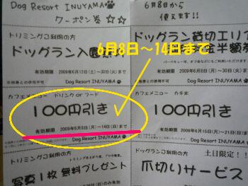 P1080766-a.jpg