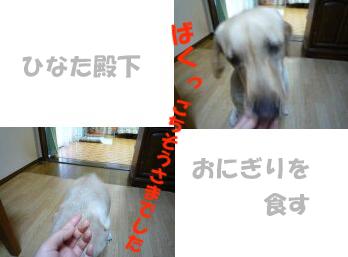 onigi-a.jpg