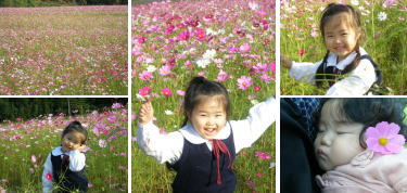 お花の中でこそ引き立つ、あたちの美しさ!