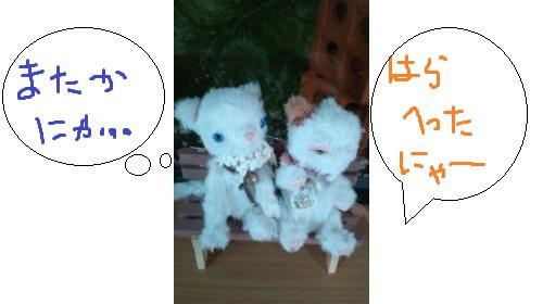 b123_20120324173442.jpg