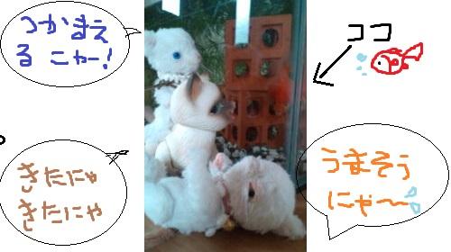 b125_20120324173453.jpg
