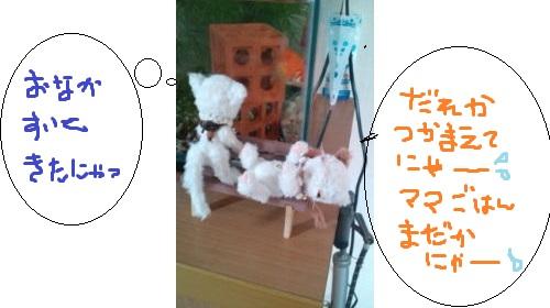 b126_20120324173458.jpg