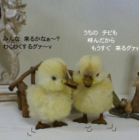 b131_20120323132447.jpg