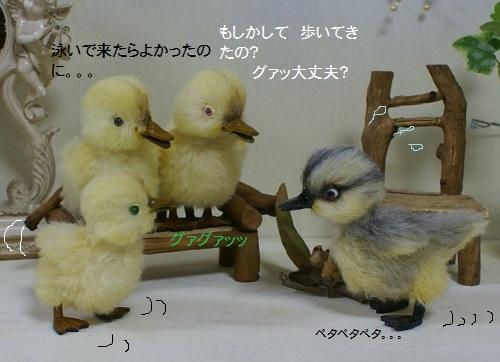 b135_20120323132510.jpg