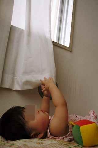カーテンの裾で遊ぶcoco