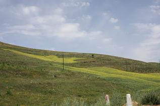 モンゴル草原1