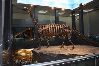 世界一の恐竜