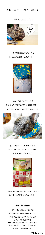 BUHI会♪最終チェック!