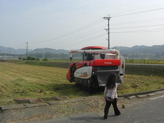 稲刈り_000