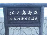 IMGP6605.jpg