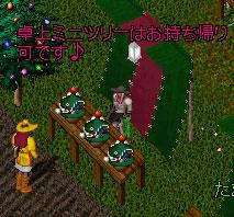 クリスマスツリー屋1