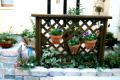 garden11_7.jpg