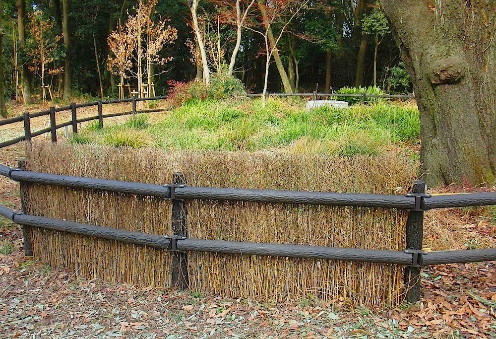 台田の杜の笹垣003