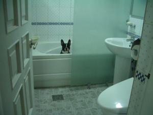 トイレに非難
