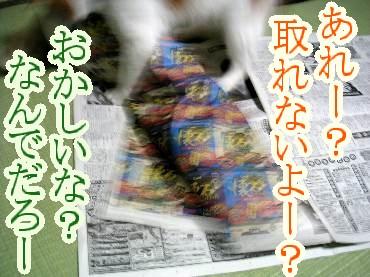 y06-06-04-04.jpg