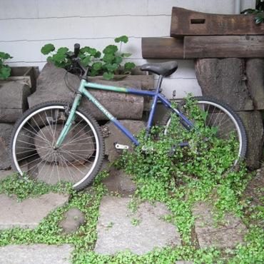 自転車370