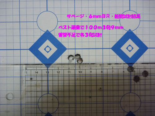 P1010645-1.jpg