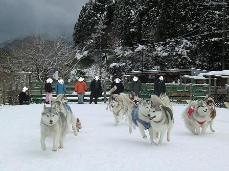 雪遊び22
