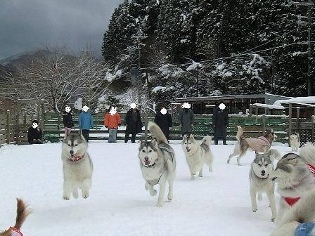 雪遊び24
