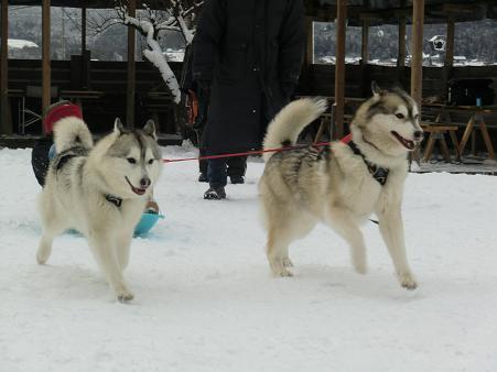 雪遊び19