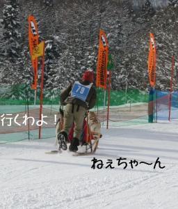 20090118妙高杉の原 15541
