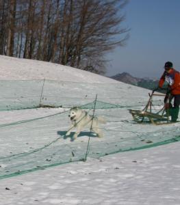 2009鬼怒川 016 3