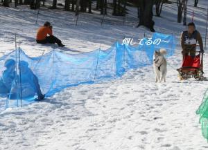 2009鬼怒川 029 う
