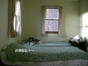 CIMG462117.jpg