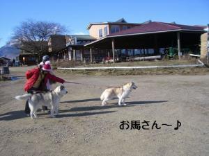 CIMG465432.jpg