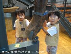 fukui1-15.jpg
