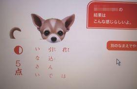mainichiwa.jpg