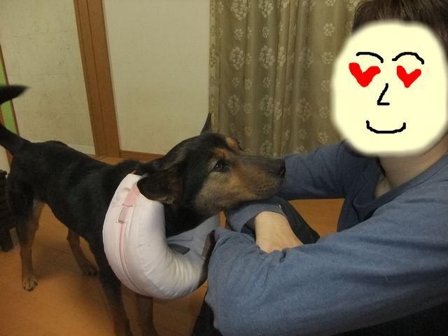 snap_huzoroi06_201146105023.jpg