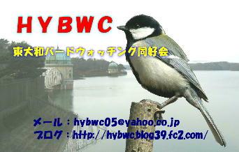 20051129084114.jpg