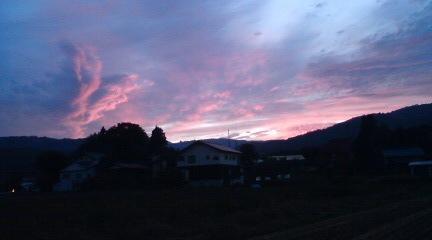20081014wild夕焼け
