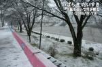 久慈川沿いで雪が降る