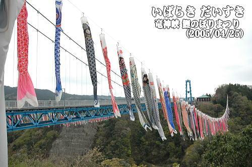 竜神峡_鯉のぼりまつり_茨城県常陸太田市