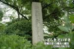 茨城百景 白幡山八幡宮