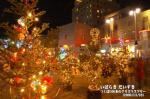 つくば100本のクリスマスツリー(茨城県つくば市)