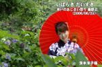 水戸のあじさい祭り 撮影会 茨木洋子様