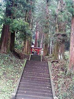 茨城百景 鷲子山と三浦杉