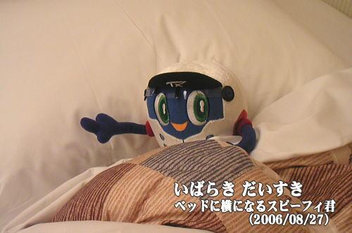 ベッドに横になるスピーフィ君