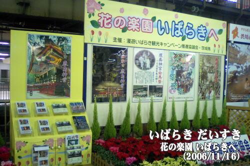 花の楽園 茨城へ「東国最古 鹿島神宮」(茨城県鹿嶋市)