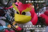 「39 あにま~るっだるまっ!」第9回 つくば100本のクリスマスツリー(茨城県つくば市)