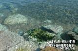 きれいで透き通る阿字ヶ浦の海水