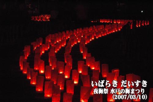 夜梅祭_水戸の梅まつり_偕楽園(茨城県水戸市)