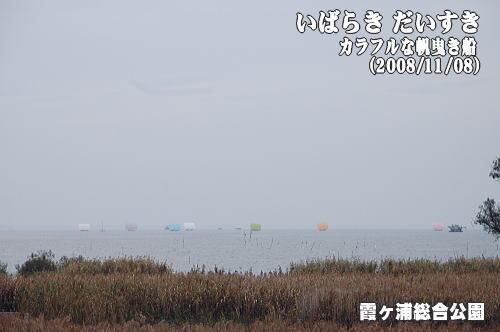 茨城県国民文化祭in土浦霞ヶ浦総合公園