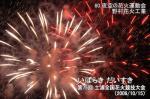 夜空の花火運動会(野村花火工業)